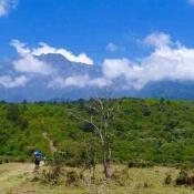 Arusha-National-Park-4