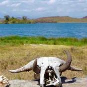 Arusha-National-Park-3