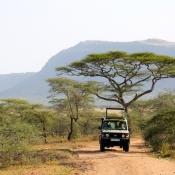 Serengeti Safari-13