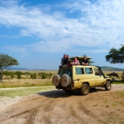 Serengeti Safari-18