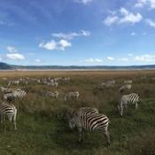 Ngorongoro Crater-18