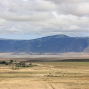 Ngorongoro Crater-21