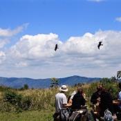 Ngorongoro Crater-1