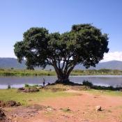 Ngorongoro Crater-2