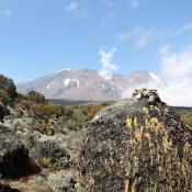 Mount-Kilimanjaro-8