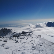 kilimanjaro-342702