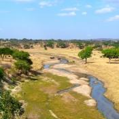 Tarangire-National-Park-9