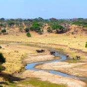 Tarangire-National-Park-10