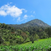 Usambara-Mountains-3