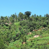 Usambara-Mountains-4