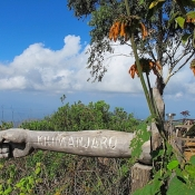 Usambara-Mountains-9