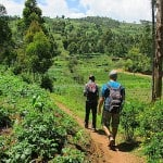 Usambara Mountains Hiking