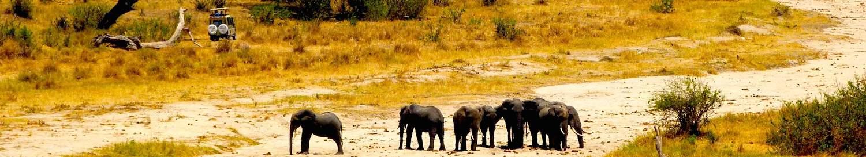 Tarangire-National-Park