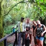 Kilimanjaro-Day-Hike