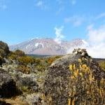 Kilimanjaro-Trekking-10