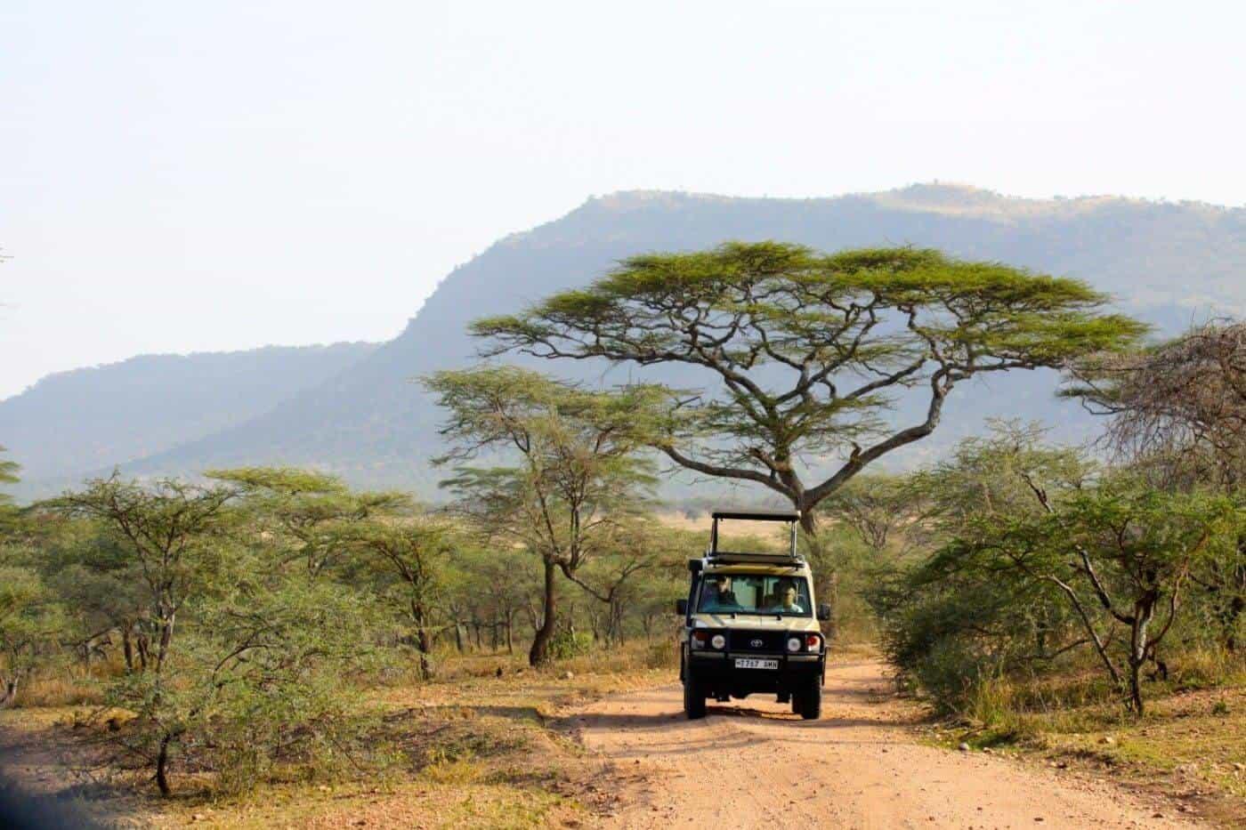 """""""Serengeti"""