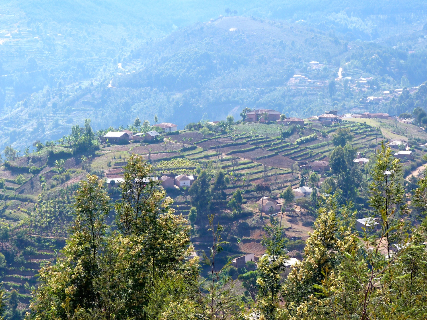 Usambara-Mountains-1