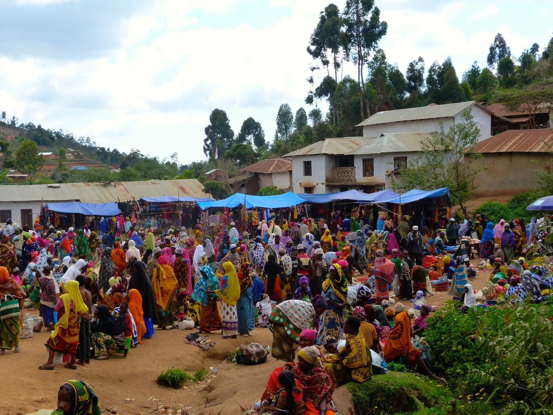 Usambara-Mountains-Mambo