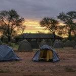 Serengeti-Camp