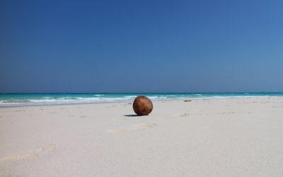Zanzibar-Kendwa-1