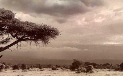 Tanzania-Honeymoon-2