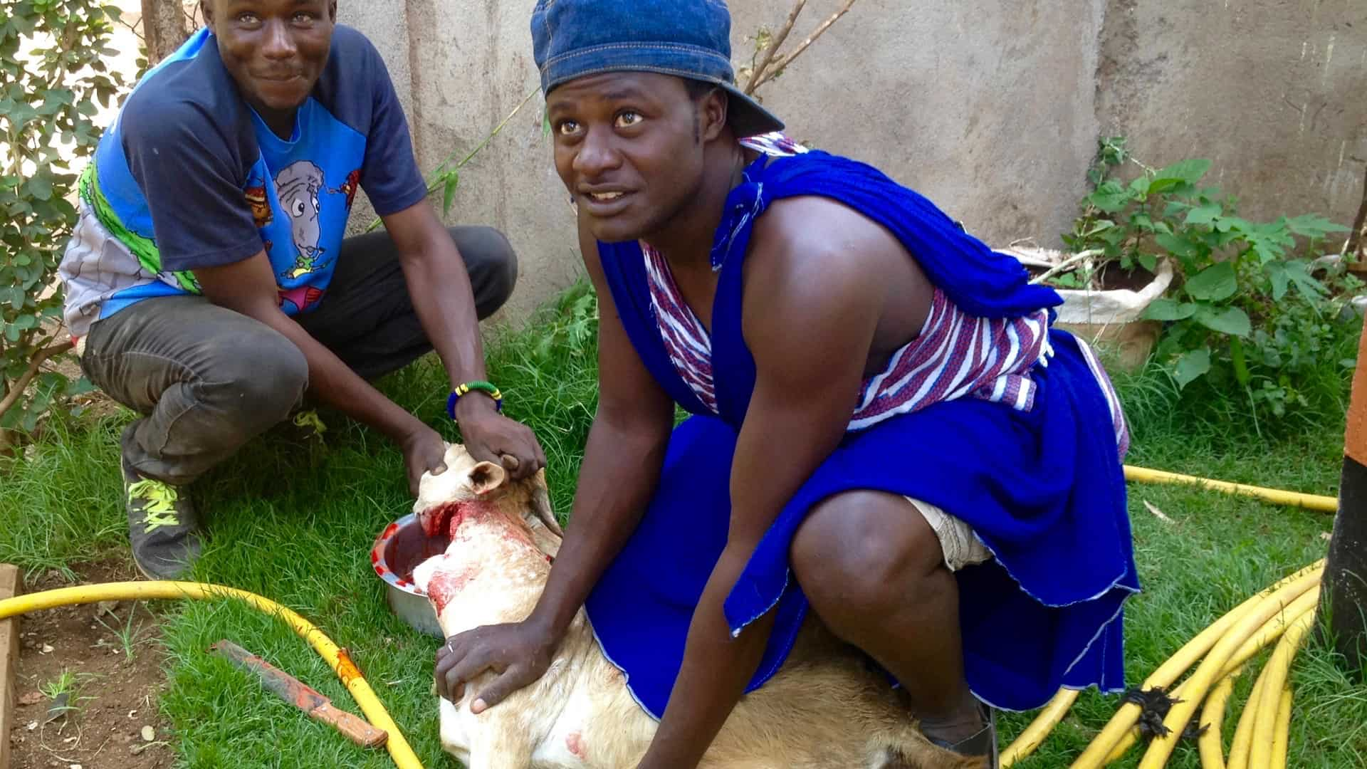 Slaughtering Goat