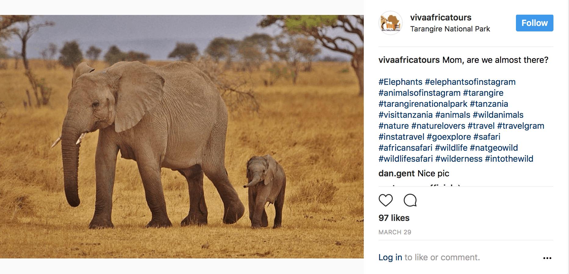 Tanzania-Instagram-7